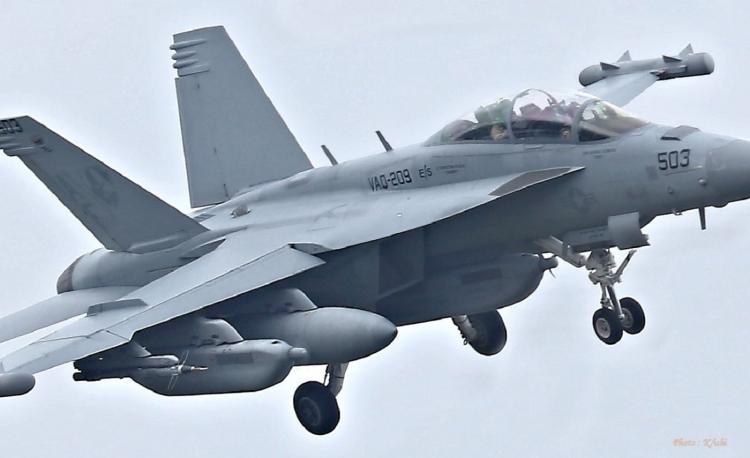 D-111.jpg
