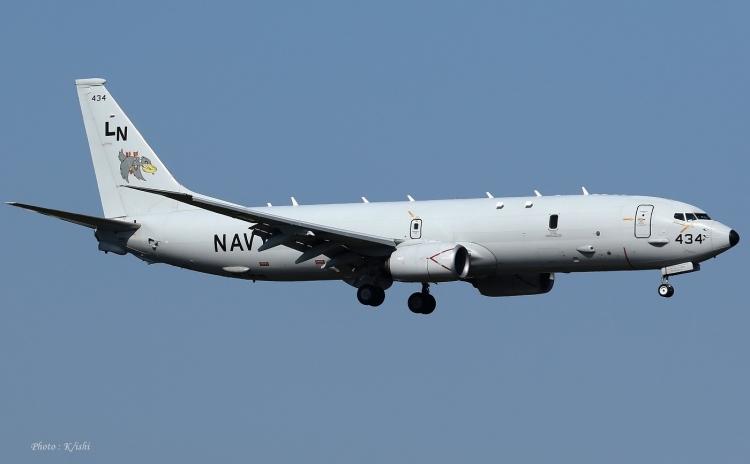 D-134.jpg