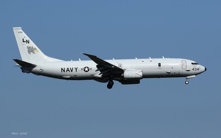 D-135.jpg