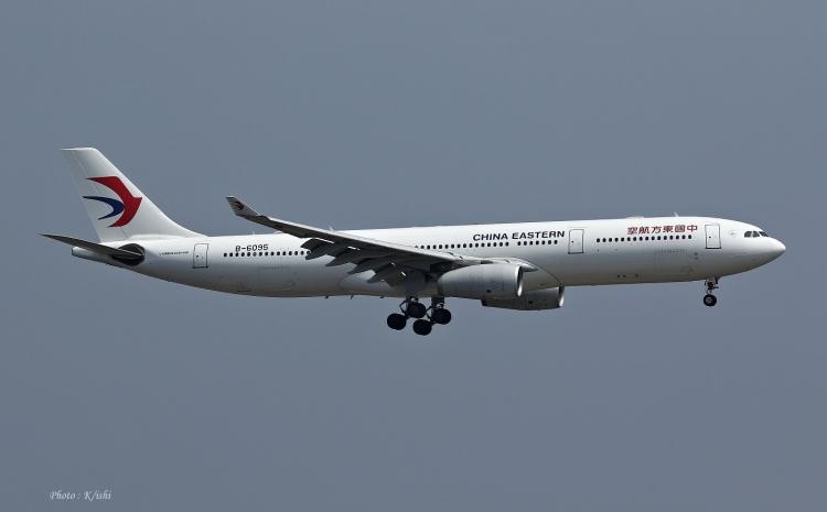 D-294.jpg