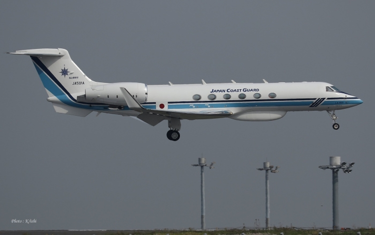 D-311.jpg