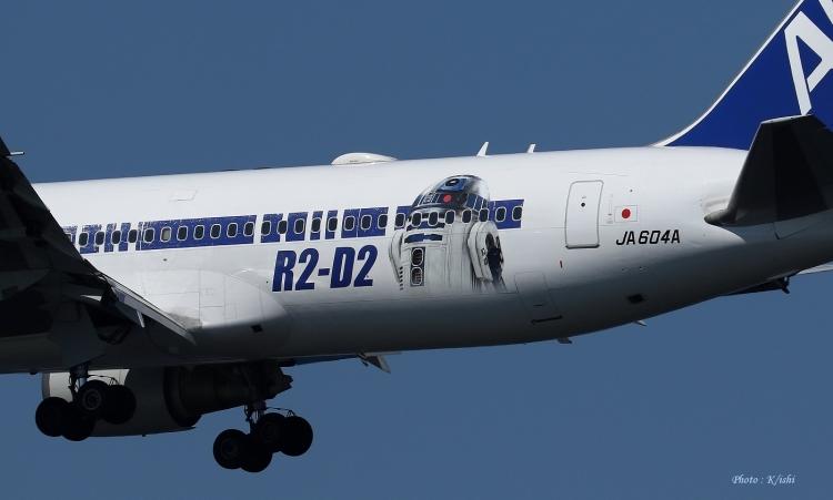 D-527.jpg