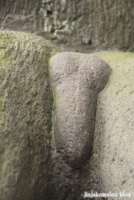 保木間氷川神社(足立区西保木間)26