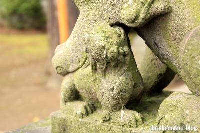 栗原氷川神社(足立区栗原)35