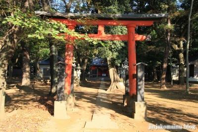 氷川神社(上尾市久保)3