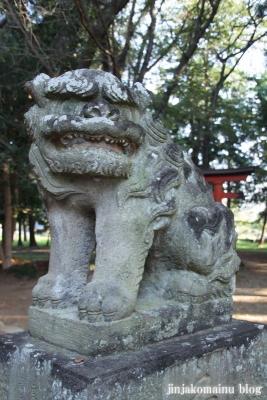 氷川神社(上尾市久保)16