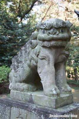 氷川神社(上尾市久保)21