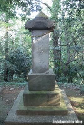 浅間神社(北足立郡伊奈町寿)4