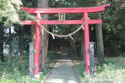 浅間神社(北足立郡伊奈町寿)1