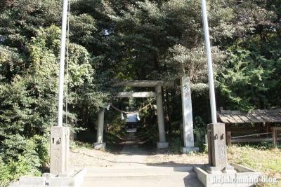 小針神社(北足立郡伊奈町寿)1