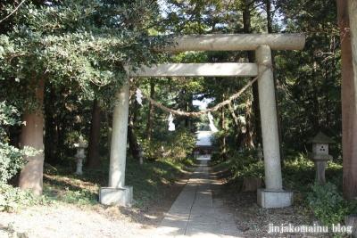 小針神社(北足立郡伊奈町寿)3