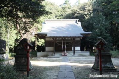 小針神社(北足立郡伊奈町寿)6
