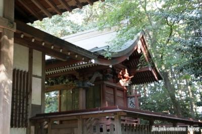 小針神社(北足立郡伊奈町寿)9