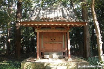 小針神社(北足立郡伊奈町寿)11