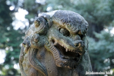 小針神社(北足立郡伊奈町寿)24