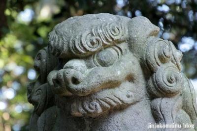 小針神社(北足立郡伊奈町寿)25