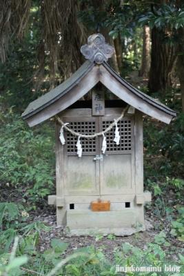 小針神社(北足立郡伊奈町寿)10