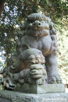 小針神社(北足立郡伊奈町寿)20