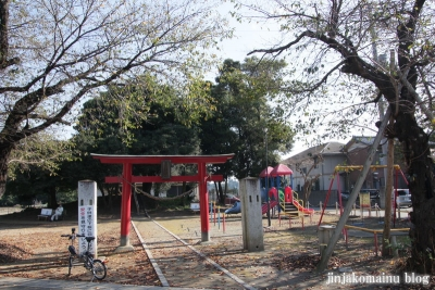 稲荷神社(北足立郡伊奈町小針新宿)1
