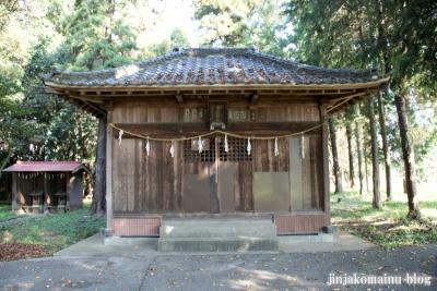 倉田氷川神社(桶川市倉田)7