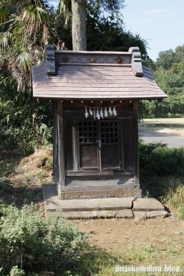 氷川諏訪神社(桶川市小針領家)17