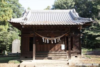 氷川諏訪神社(桶川市小針領家)8