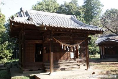氷川諏訪神社(桶川市小針領家)10