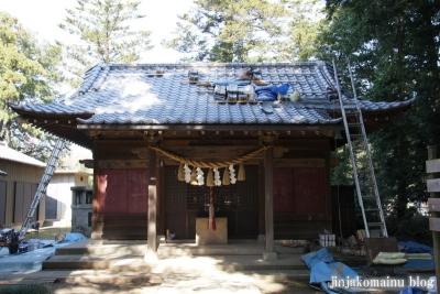 氷川神社(桶川市坂田)11