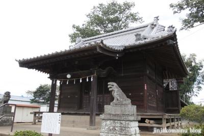 諏訪神社(上尾市畦吉)10