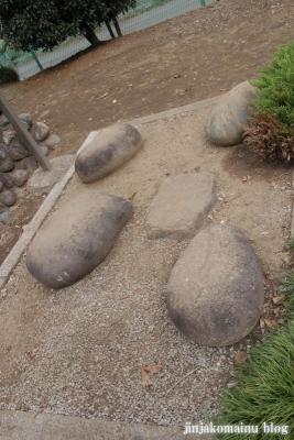 諏訪神社(上尾市畦吉)16