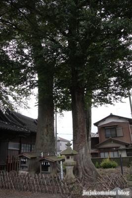 八枝神社(上尾市平方)7