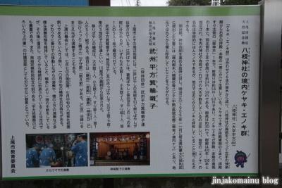 八枝神社(上尾市平方)5