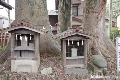 八枝神社(上尾市平方)8