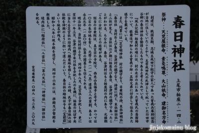 春日神社(上尾市柏座)5