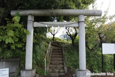 天神社(上尾市西宮下)1