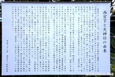 天神社(上尾市西宮下)2