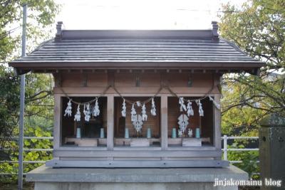 天神社(上尾市西宮下)5