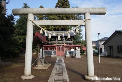 氷川神社(上尾市今泉)4