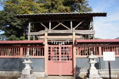 氷川神社(上尾市今泉)9