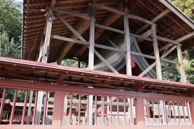 氷川神社(上尾市今泉)11