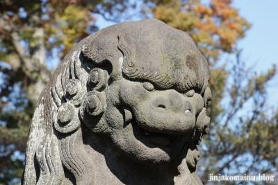 氷川神社(上尾市地頭方)32