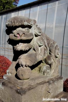 氷川神社(上尾市地頭方)13