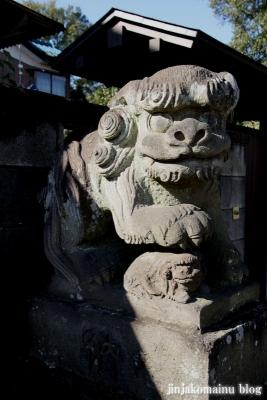 氷川神社(上尾市地頭方)17