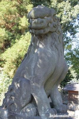 氷川神社(上尾市地頭方)29