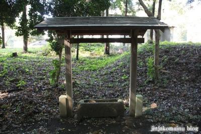 大鷲神社(上尾市戸崎)3