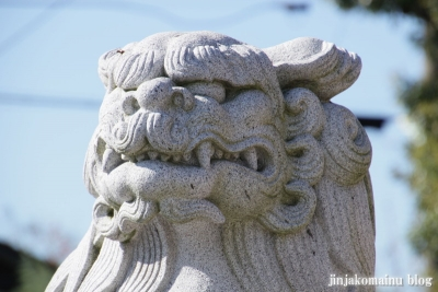 吉野神社(さいたま市北区吉野町)25