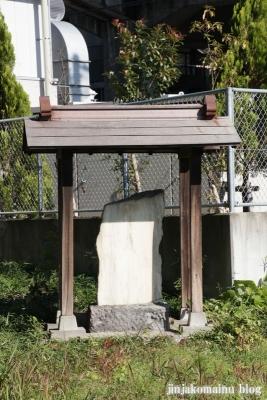 氷川神社(さいたま市北区今羽町)11