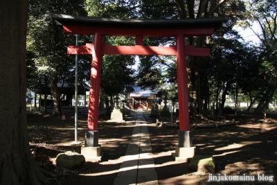 氷川神社(さいたま市見沼区東大宮)5