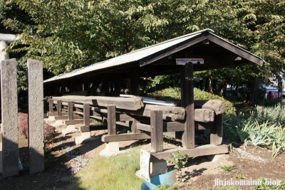 氷川神社(さいたま市見沼区東大宮)15