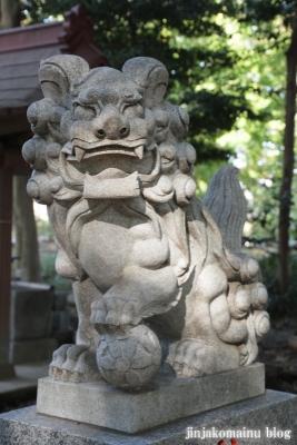 氷川神社(さいたま市見沼区東大宮)7